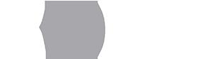 logo-BORG